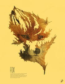 Fox (Folia Infinitus Collection) by Luis Pinto