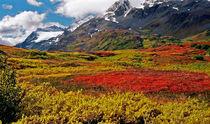 Colorful Land - Alaska von Juergen Weiss