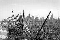 Another view of Chicago von Milena Ilieva