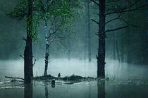 In the swamp by Alexei Mikhailov