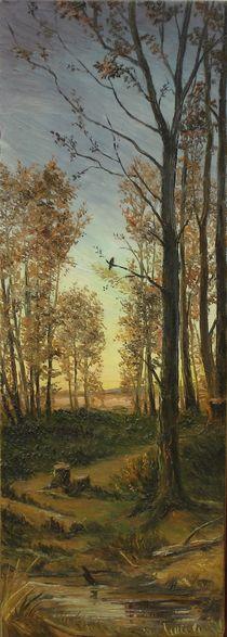Fall in the meadow / Herbst in der Wiese by Apostolescu  Sorin