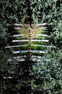 Nature-Man von Michael Beilicke