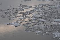 Eiszeit I Ice Age by Kerstin Sandstede