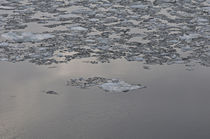 Eiszeit by Kerstin Sandstede