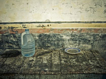 Found stilll life by Cristobal Ladron de Guevara
