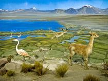 landscape by Cristobal Ladron de Guevara
