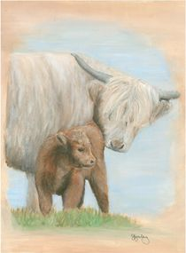 Kyloe, Highland cow and calf von Sarah Aynsley