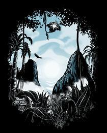 Black Orchid by John Duvengar
