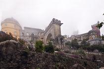 Pena Palace by Saleh Mostafa Lotfy