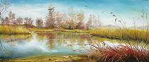Delta Landscape / Delta Landschaft von Apostolescu  Sorin
