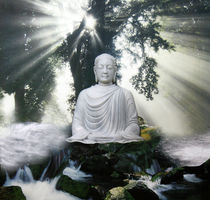 Buddha Nature von Yvonne Pfeifer