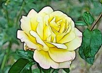 Queen of Flowers - Königin der Blumen by lessaksart