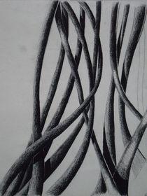 Schlingpflanze II von Katja Finke