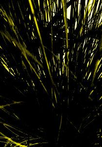 spiked destructive  by michael  arnott