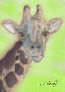 giraffe by michael  arnott