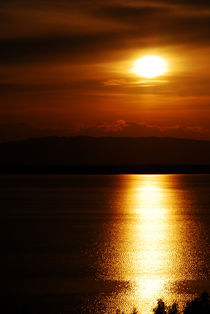 Sun Over the Water by Denis Kiselev