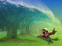 Snail-on-skateboard