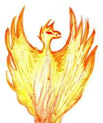 Phoenix by Johanna Földesi