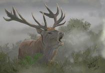 The fog horn by John Blackford