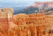 Bryce Canyon National Park von buellom