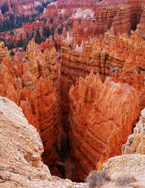 Bryce Canyon National Park 2 by buellom