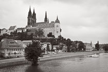 Meißen - Blick zur Albrechtsburg III by Peter Zimolong
