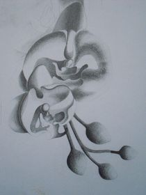 Orchideenrispe von Katja Finke