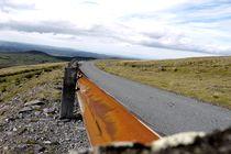 Bending Road by Rees Hope