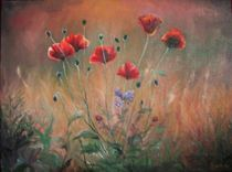 Field of poppies / Mohnfeld by Apostolescu  Sorin
