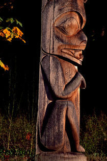 Frog Totem 317 von Patrick O'Leary