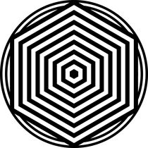 zebra hexagon von Chandler Klebs