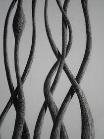 Ausschnitt I der Schlingpflanze II von Katja Finke
