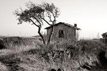 Verlassene Sardische Landschaft von captainsilva