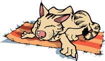 Sly resting cat. von Oleksiy Tsuper
