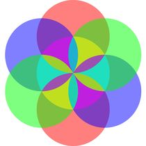 transparent circle flower by Chandler Klebs