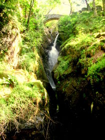 Aira Force by Charlotte Gorzelak
