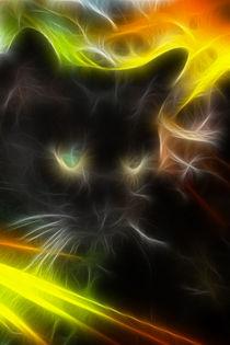 Ghost cat - Geisterkatze by lessaksart