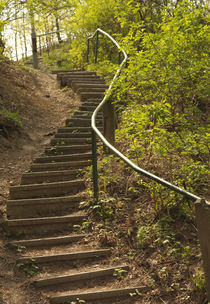 Stairs in the park by Tereza Visinka
