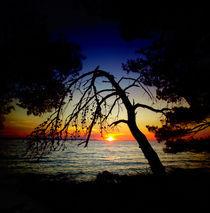 Sunset von Nedim Seferovic