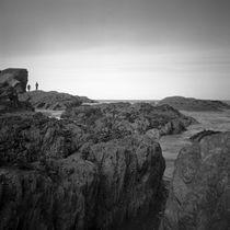 Rocks, Berrynarbor, North Devon, 2011 by Paul Cooklin