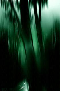 Dark green . von Bernd Vagt