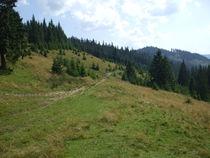 Mountains in the Hargita No.3 by Johanna Földesi