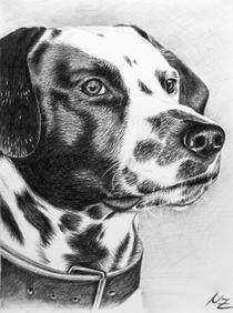 Dalmatiner Portrait von Nicole Zeug