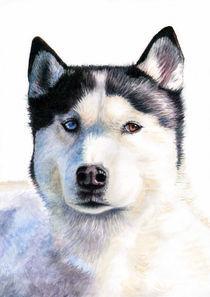 Husky Blue von Nicole Zeug