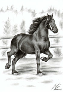 Friesian Horse von Nicole Zeug