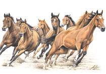 Trakehner Horses von Nicole Zeug