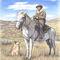 Montana-shepherd