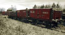 Red Coal Waggons von Steven Stoddart