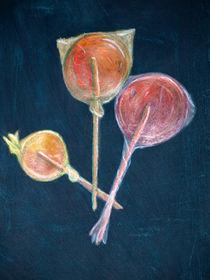 lollipops by Melanie Carol