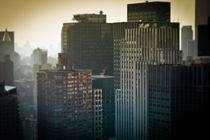 New York - City Jungle -  New York City Dschungel by temponaut